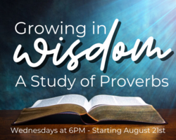 """Growing in Wisdom"" Study"